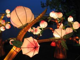 Lantern Festival Lights