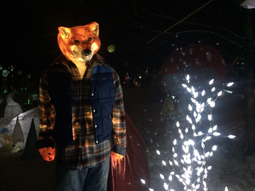 Into The Woods - Fernie Lantern Festival 2016